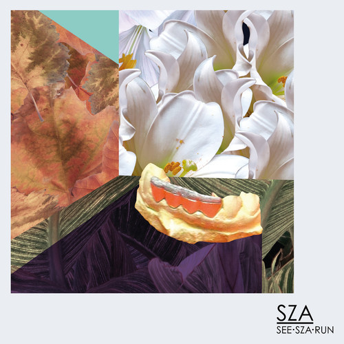 sza z album download free