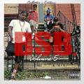 BSB Vol. 5 - Troy Ave & The BSB Crew