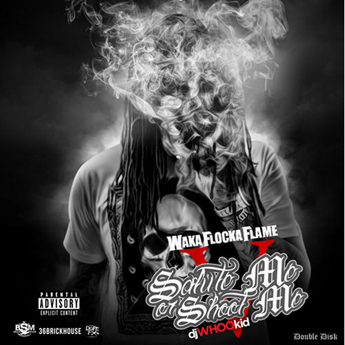 Salute Me Or Shoot Me 5 - Waka Flocka | MixtapeMonkey.com